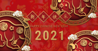Gala del festival de primavera (año nuevo chino)