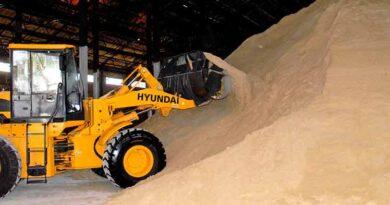 Persiste alta volatilidad en mercado azucarero mundial